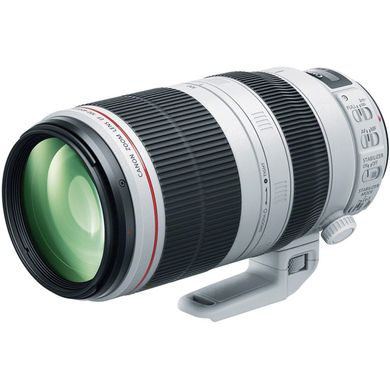 Canon EF 100-400mm f/4.5-5.6L IS II USM